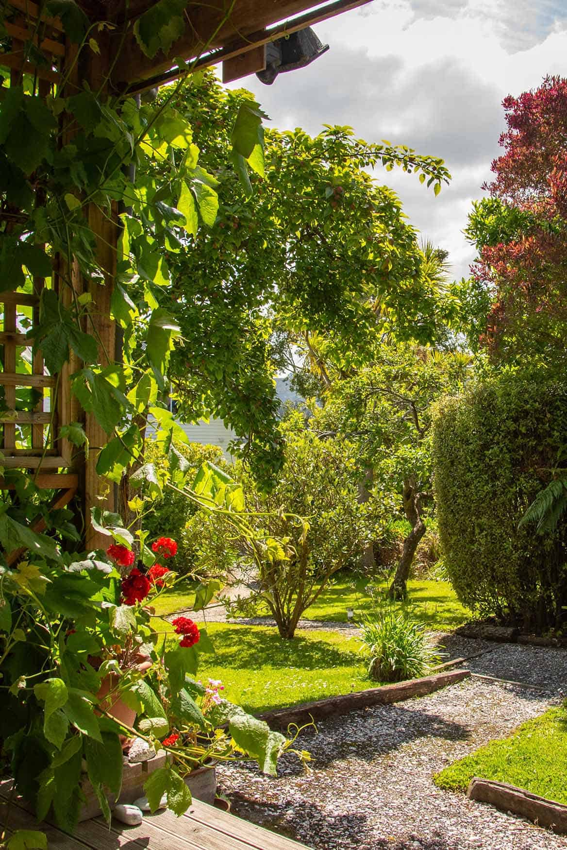 View of garden from Fantail cottage accommodation in Dunedin