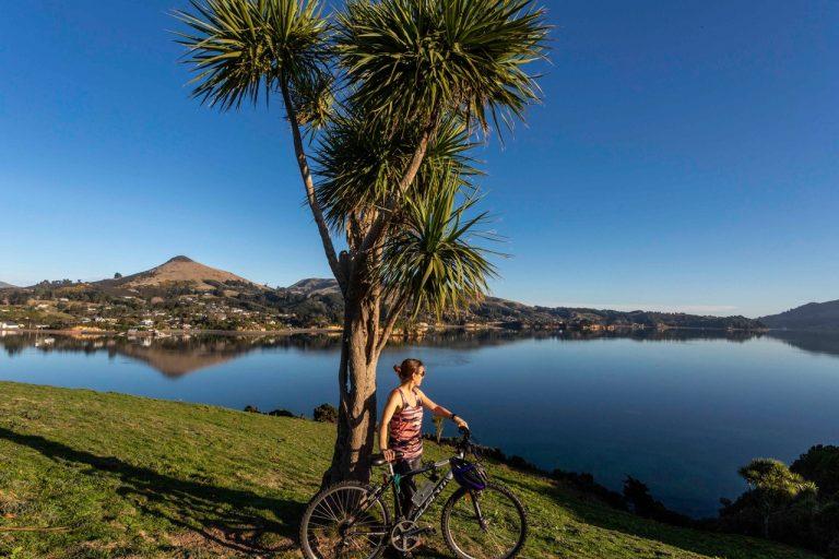 Cycling on the Otago Penisula, Dunedin from Fantail Lodge accommodation